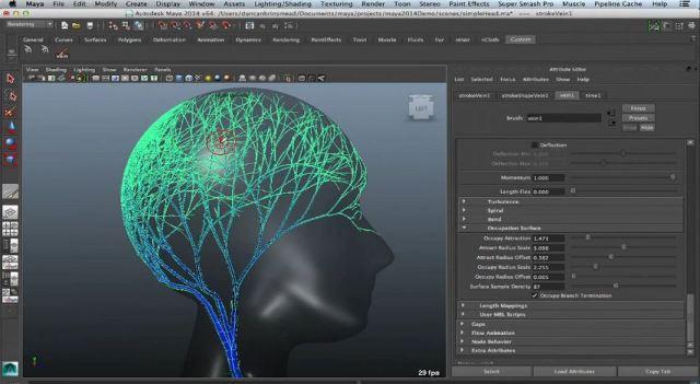 Autodesk Maya For MacOSX