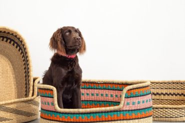 Koskela's handwoven pet beds for the most stylish of pooches