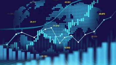 [100% OFF] Investing for Beginners: Learn Investing Strategies & Tools