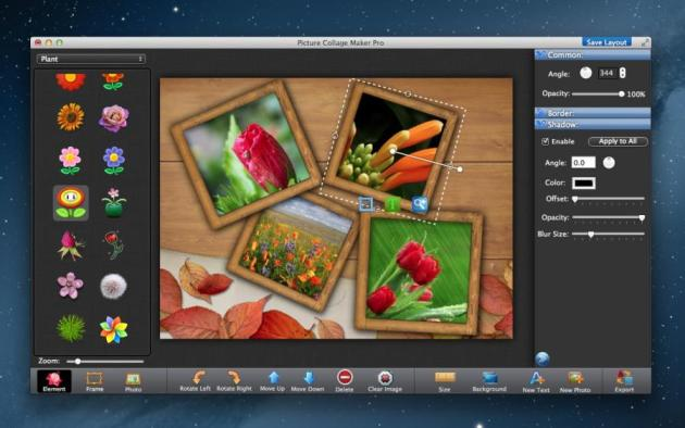 Picture Collage Maker Pro Free Download – OsFreeware