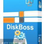 DiskBoss Ultimate Free Download