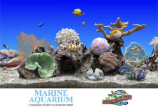 SereneScreen-Marine-Aquarium-Latest-Version-Free-Download