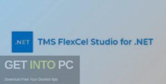 TMS-FlexCel-VCL-2021-Free-Download-GetintoPC.com_.jpg