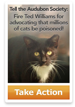 Tell the Audubon Society:</p> <p>Fire Ted Williams for advocating that millions </p> <p>of cats be poisoned! Take action.