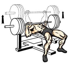 Exercise 4: Bench press