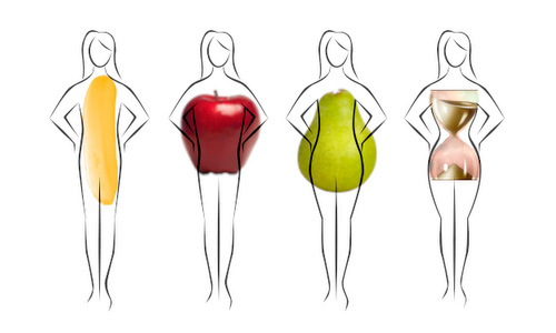 Women body types