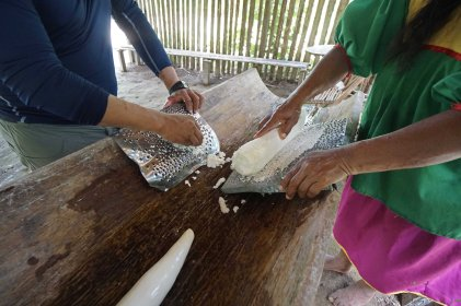 81 making yuca powder sm
