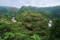16 river landscape sm
