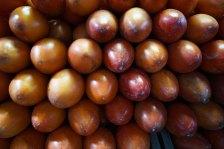 26 fruit sm