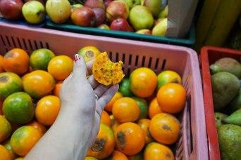 30 fruit hand sm