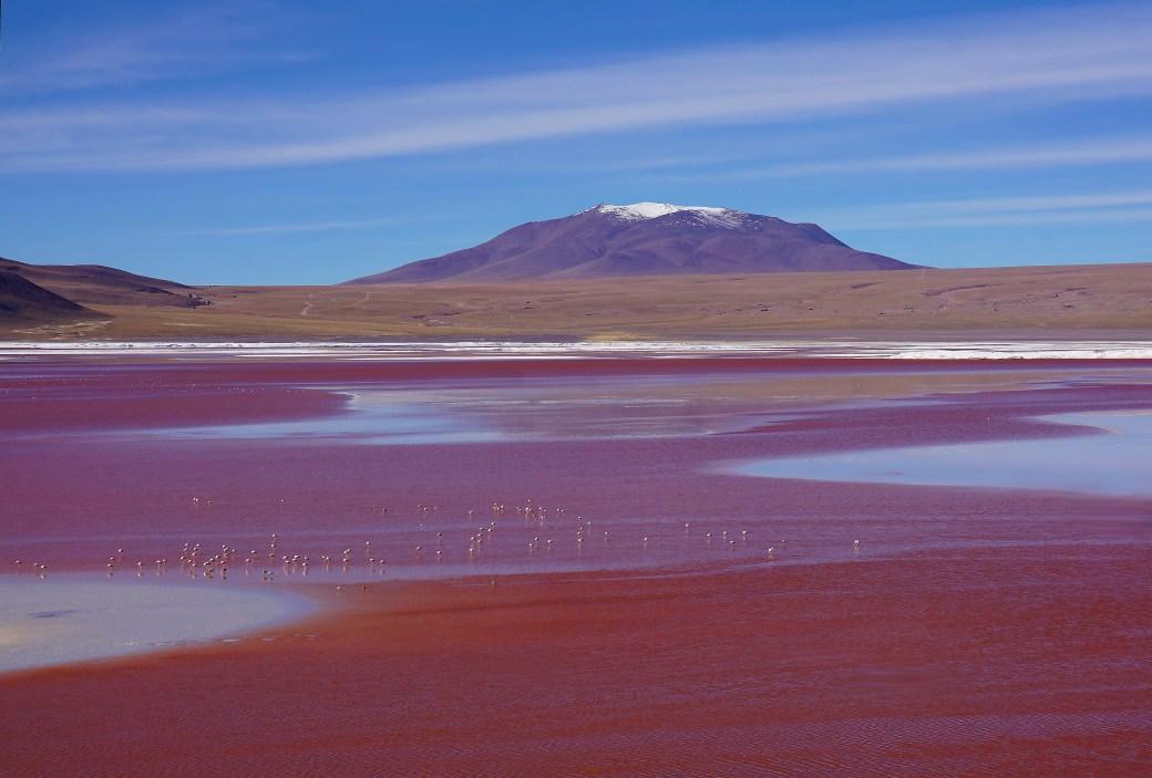 laguna roja sm