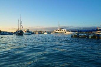 boats sm