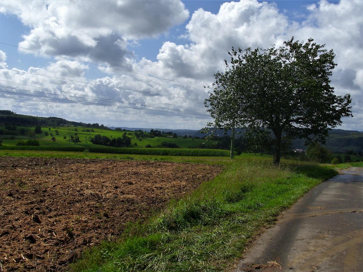 Foresta Nera in bicicletta - Tappa 2