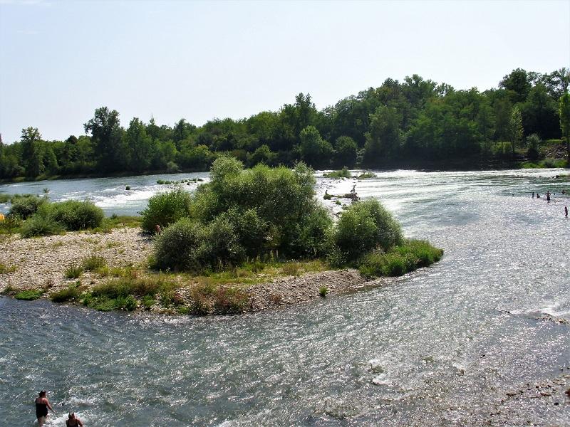 Bagnanti lungo le sponde del Reno