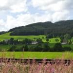 Tappa5-Freiburg-Titisee - Titisee4-1.jpg
