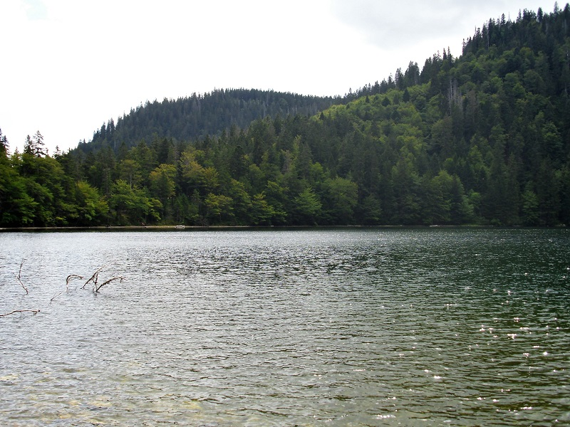 Le placide acque del Feldsee
