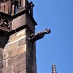 Freiburg - Friburgo-Cattedrale-3.jpg