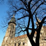 Cattedrale Friburgo