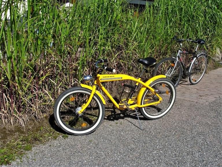 Bicicletta custom in foresta nera germania
