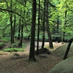 Huelgoat - Huelgoat-alberi.jpg