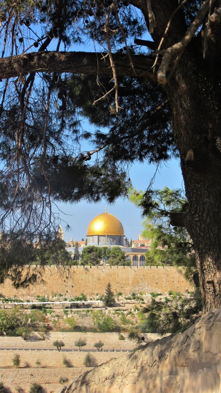 Monte-degli-Ulivi - Gerusalemme-la-cupola-della-roccia.jpg