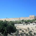 Monte-degli-Ulivi - Gerusalemme-mura-di-Gerusalemme.jpg