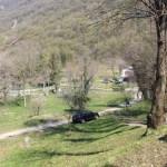 Vercurago - Santuario-San-Girolamo-la-rocca-5.jpg