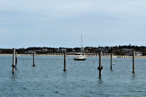 Marthas-Vineyard - Marthas-Vineyard-Edgartown-Harbor-2.jpg