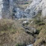 Monte-Alben - Monte-Alben-sentiero-salita-4.jpg