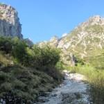 Monte-Alben - Monte-Alben-sentiero-salita.jpg