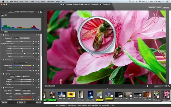 ACDSee Photo Studio 7.1.2020 Crack With License Key 2021 Download