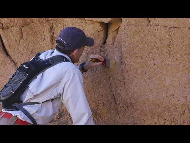 Scientists unearth new dinosaur species in Mongolia's Gobi Desert