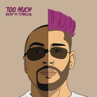 New Single: ZAYN   Too Much (feat. Timbaland) [Audio]