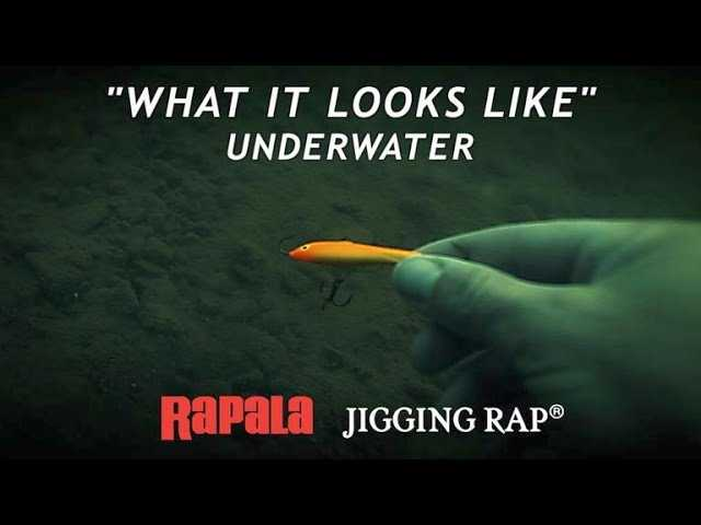 Rapala Jigging Rap | What it Looks Like Underwater