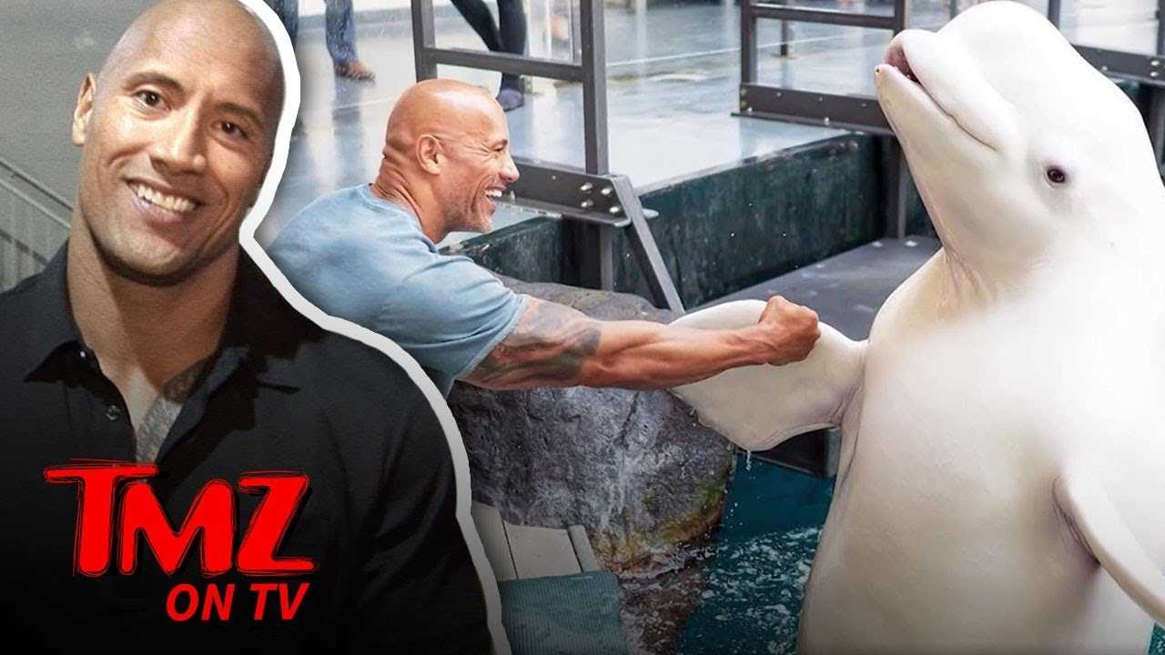 The Rock Gets Heat For His Whale Photo! | TMZ TV