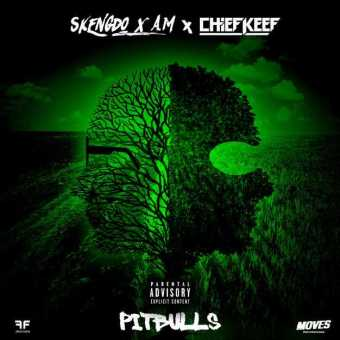 New Single: Skengdo, AM & Chief Keef   Pitbulls [Audio]