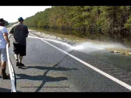 RAW VIDEO: Crews wash hundreds of fish off I-40