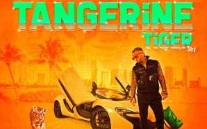 New Project: Riff Raff | Tangerine Tiger [Audio]