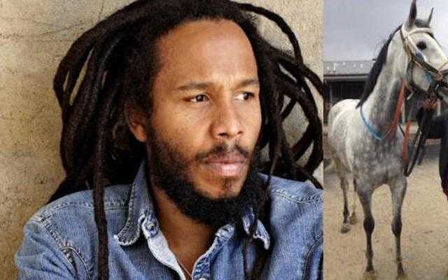 Ziggy Marley to drop out of concert series at Del Mar Track, citing animal abuse