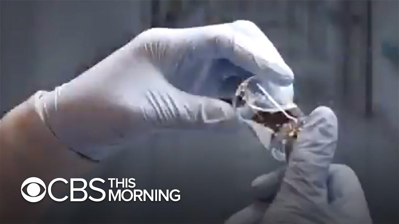 White House hails possible coronavirus treatment remdesivir