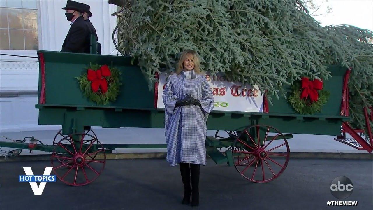 Melania Welcomes White House Christmas Tree | The View