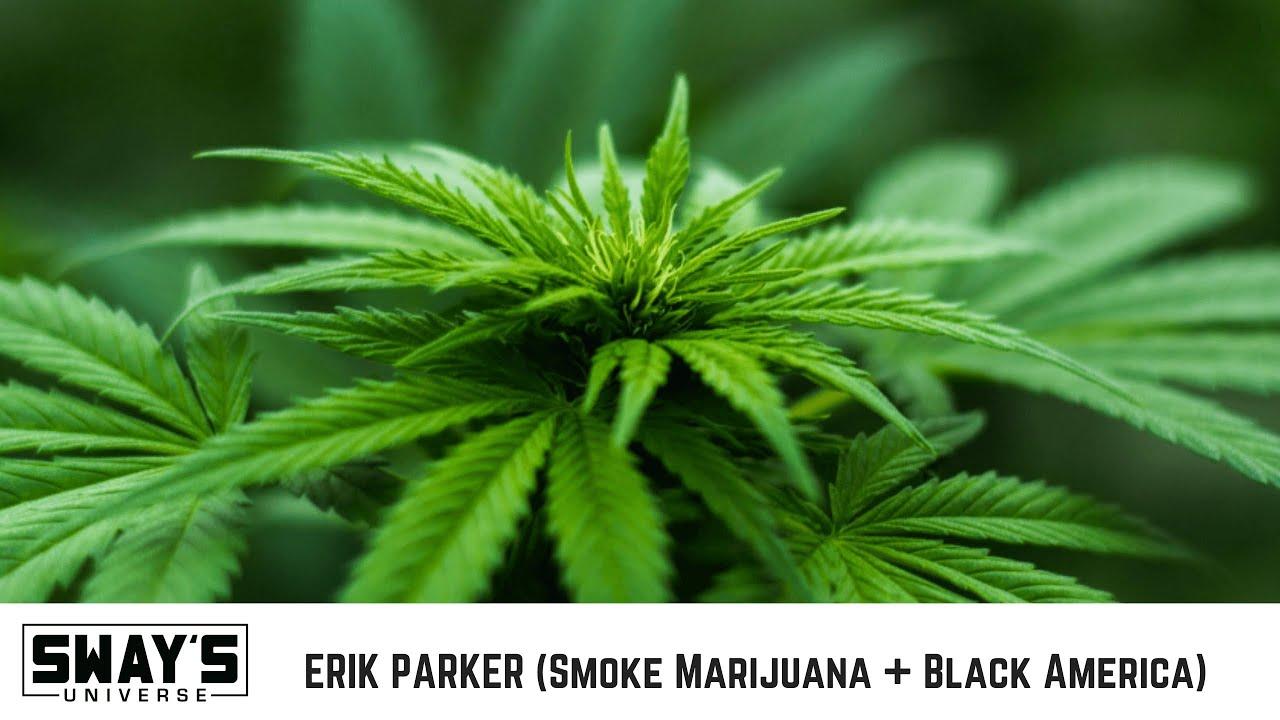 Erik Parker Talks New BET Documentary Smoke: Marijuana + Black America | SWAY'S UNIVERSE