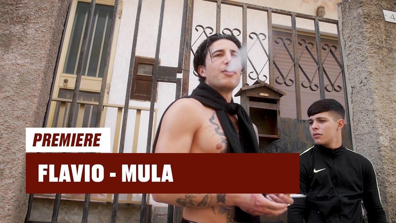 Flavio - Mula (prod. by Nizzo)