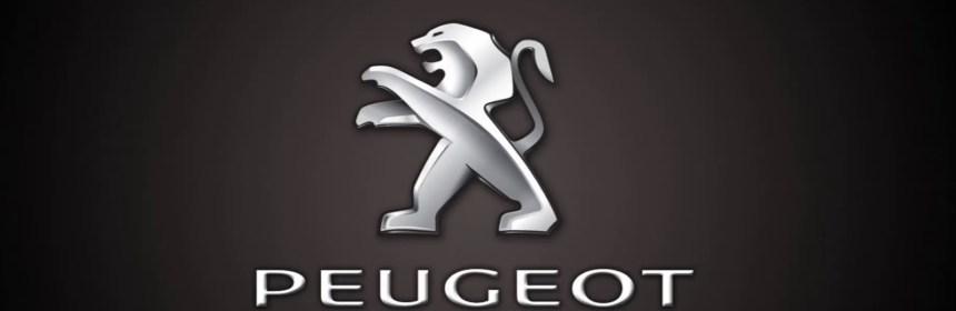 Peugeot Navigation DVD