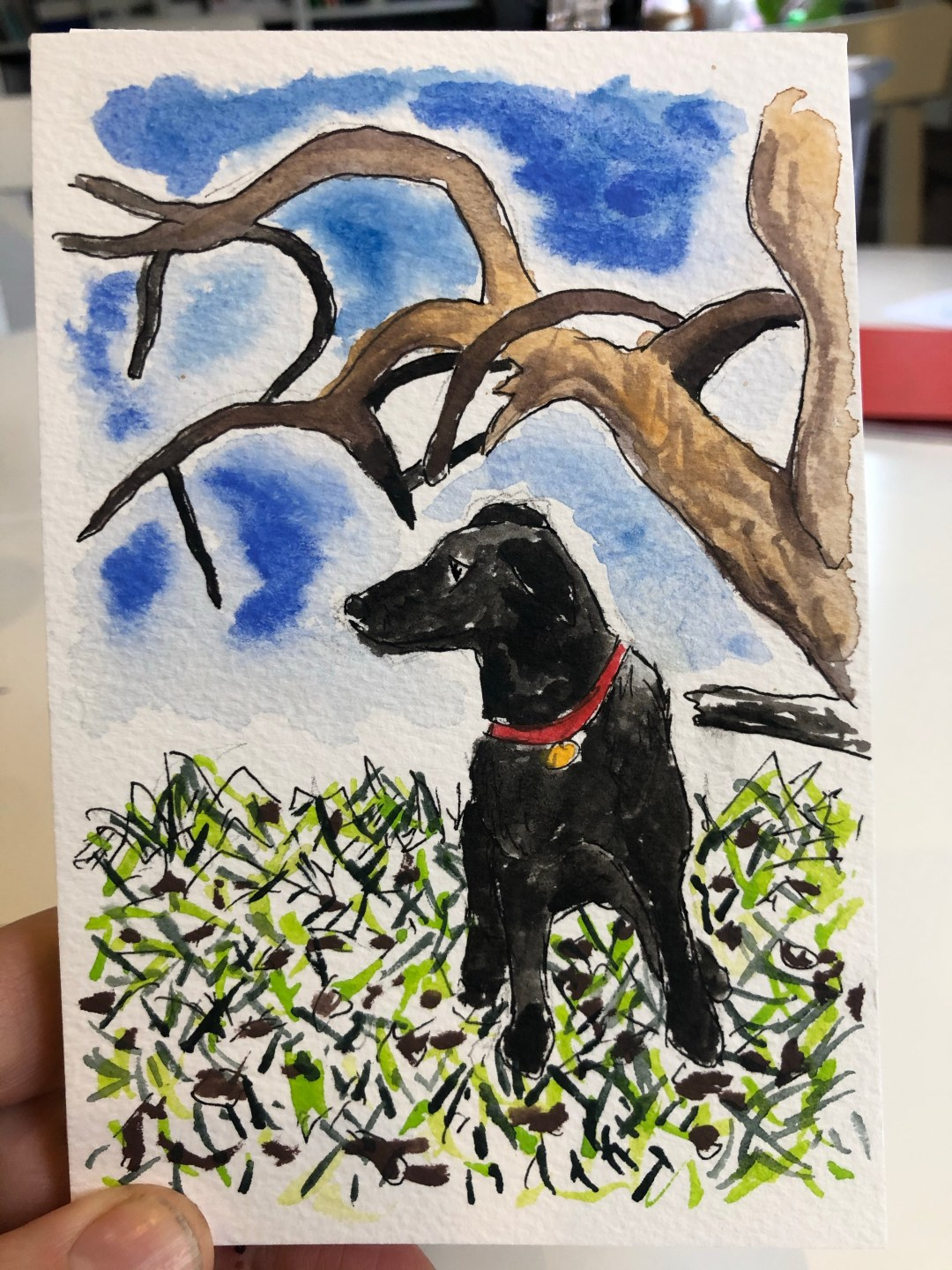 Small painted postcard of our dog in the grass.