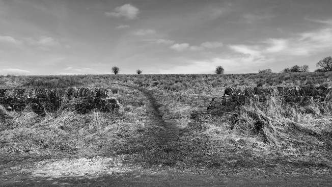 A trail leading through a broken stone wall.