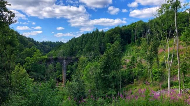 The Duke's bridge at Chatelherault Country Park.