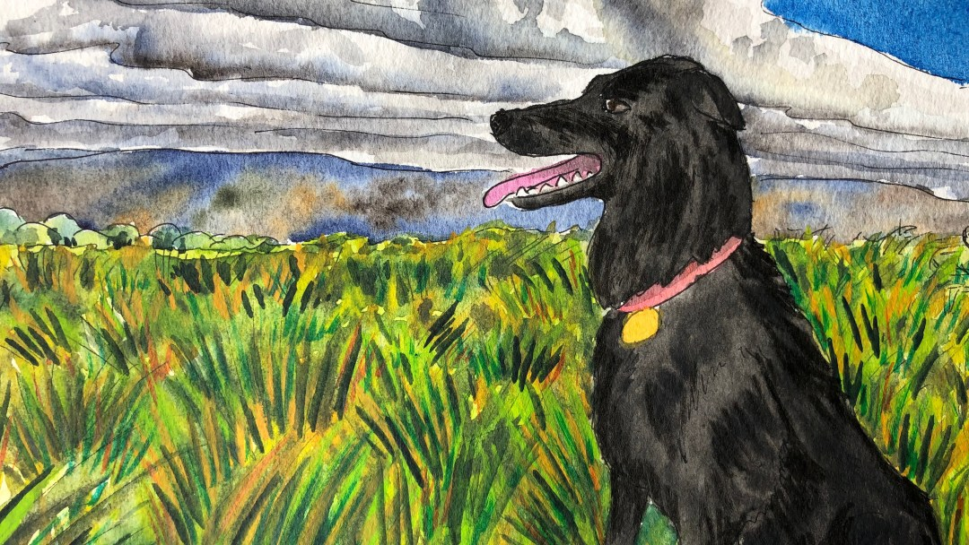 Watercolor painting of Rubee in a field.