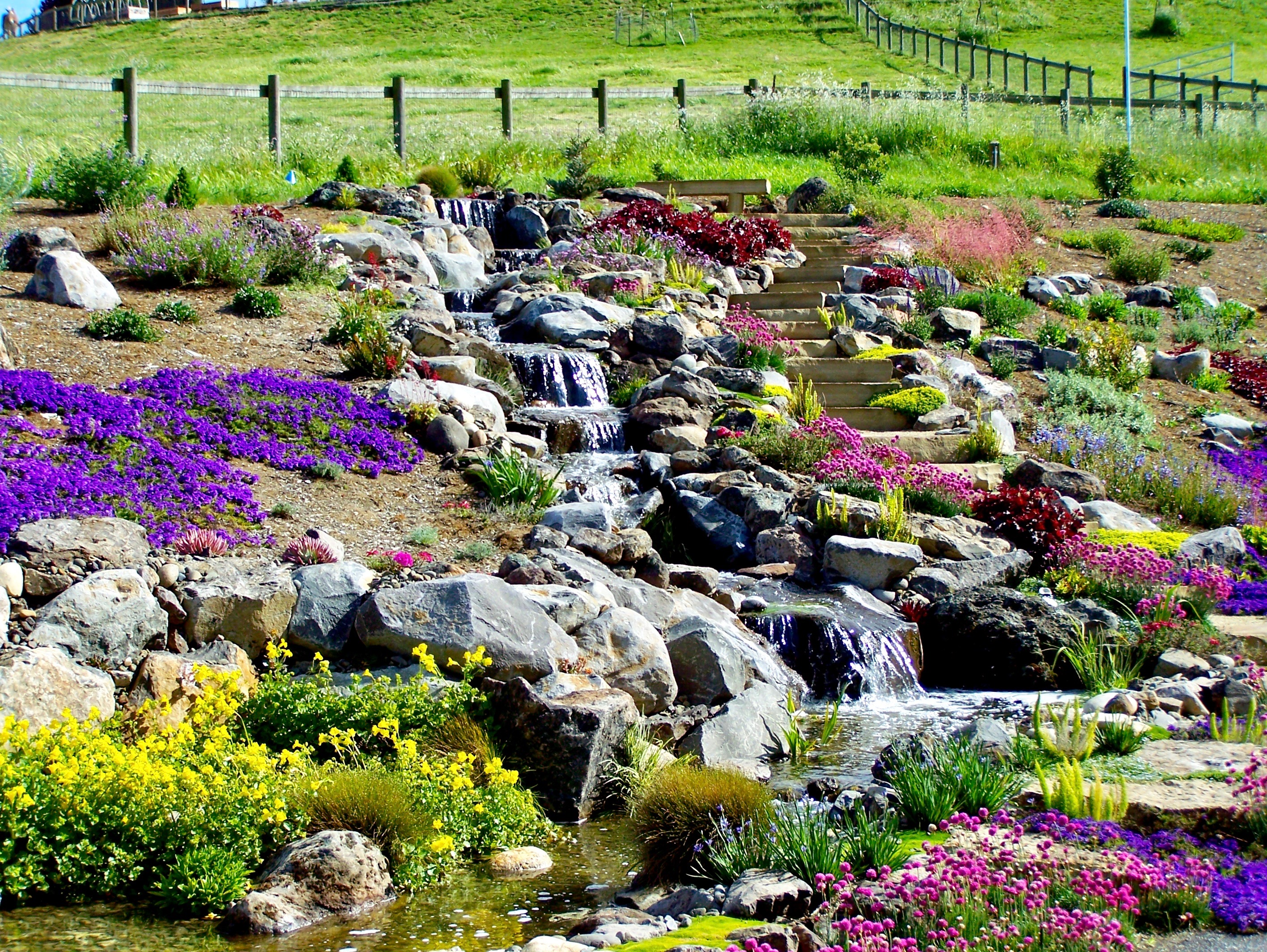 Landscaping Around Your Pond - Sweetwater Landscape on Backyard Landscaping Near Me id=84229