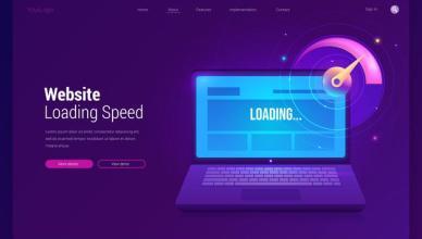 WordPress Website Performance